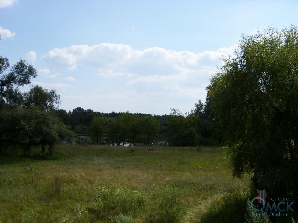 Поляна рядом с озером