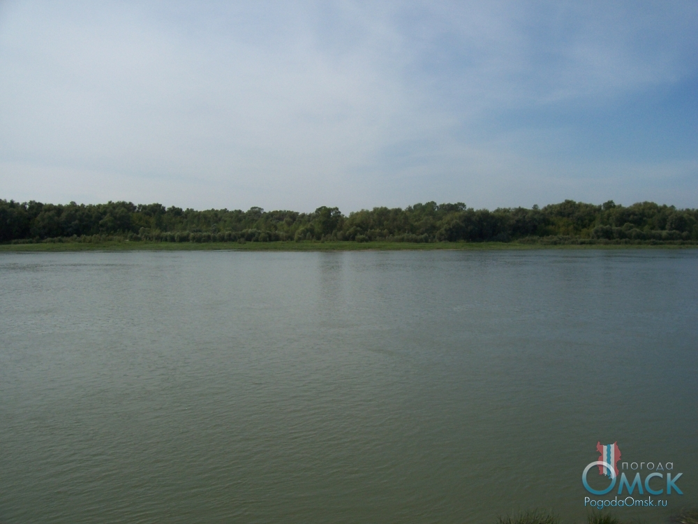 Зеленый берег Иртыша