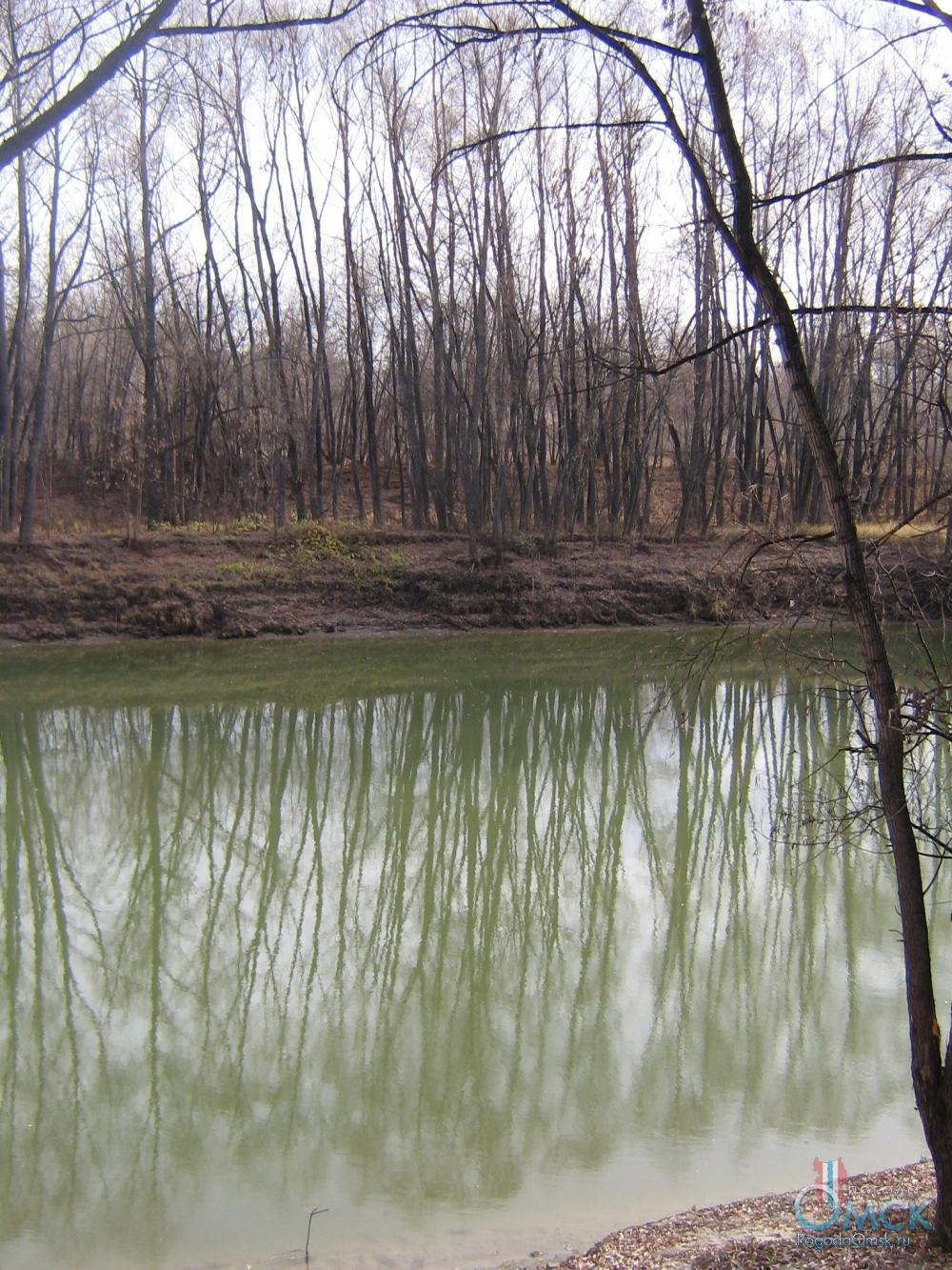 Зелёный цвет воды в реке