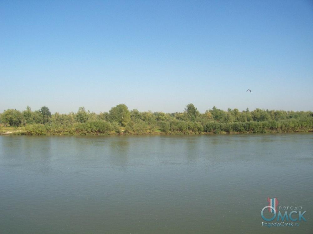 Вид на зеленый берег реки