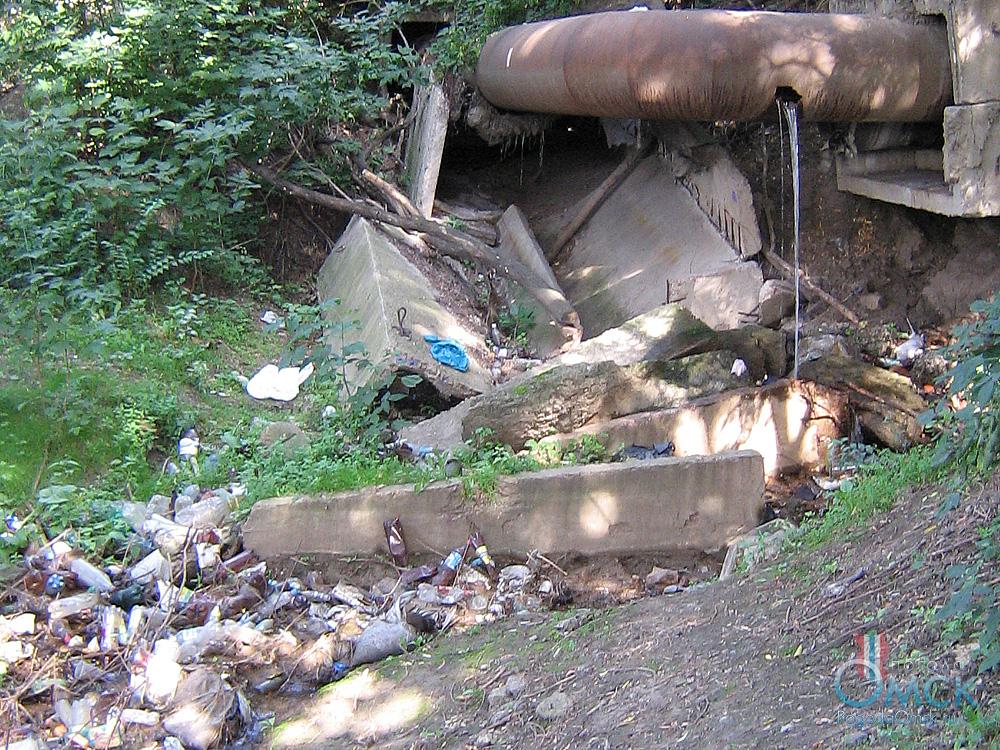 Выброшенные отходы на берегу Оми