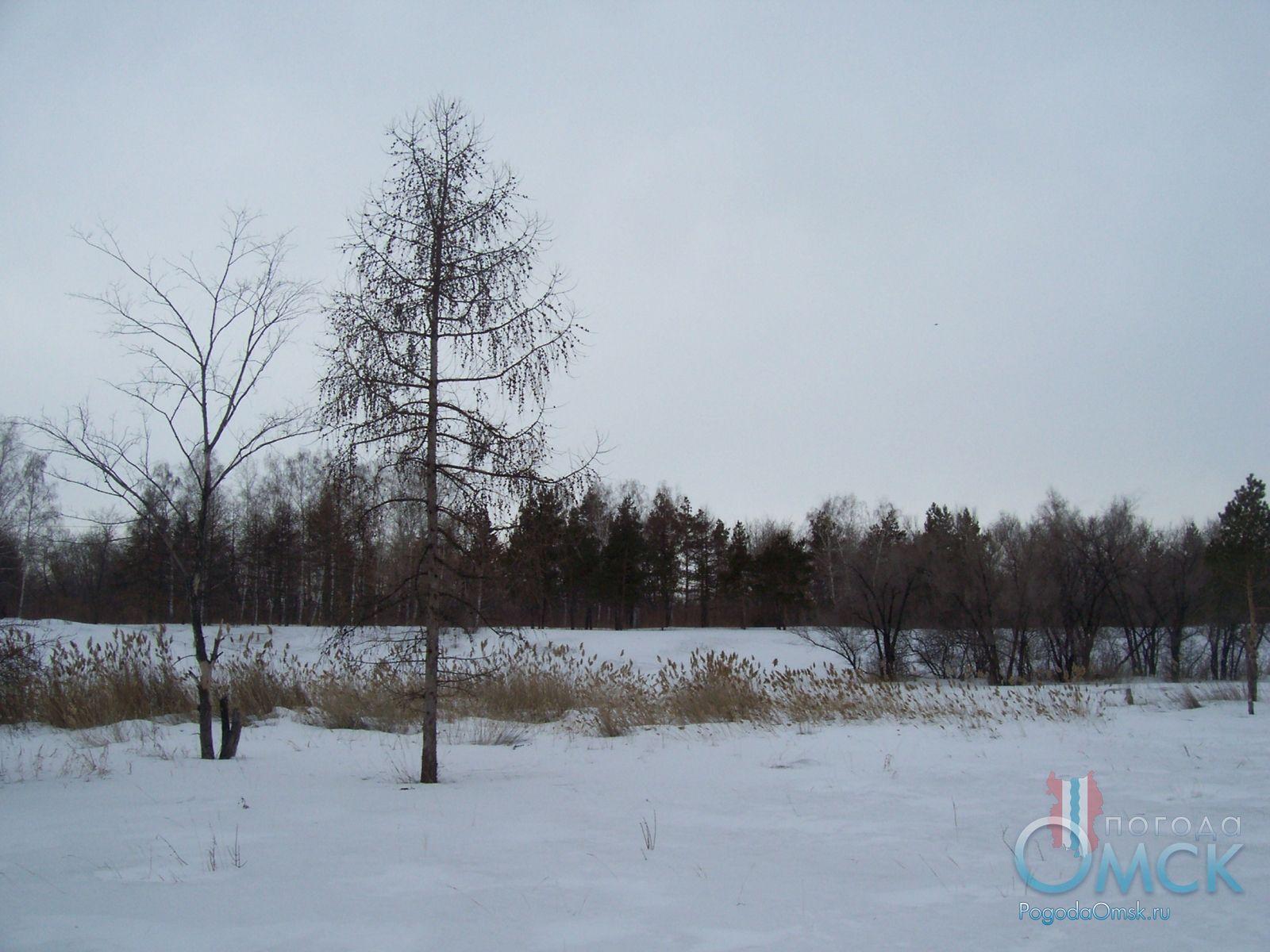 Пейзаж в пасмурный февральский день
