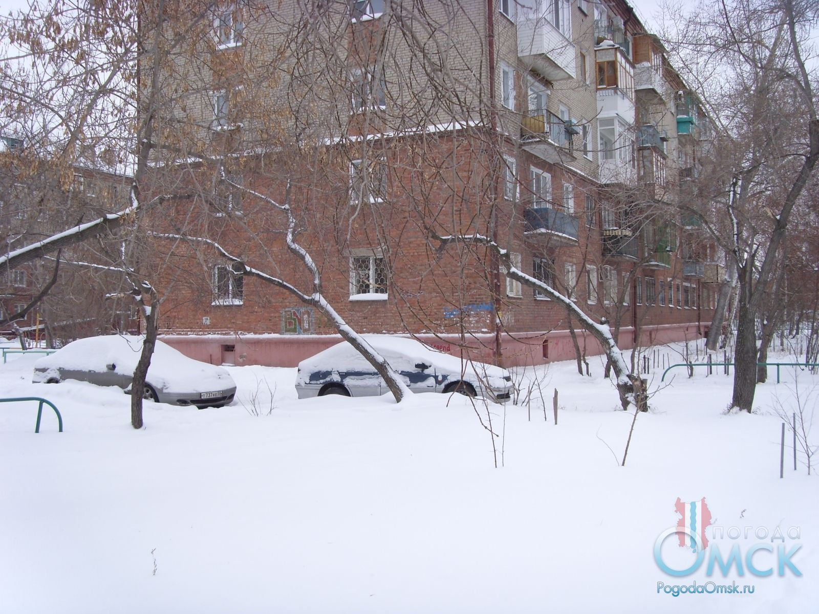 Все укрыто снегом