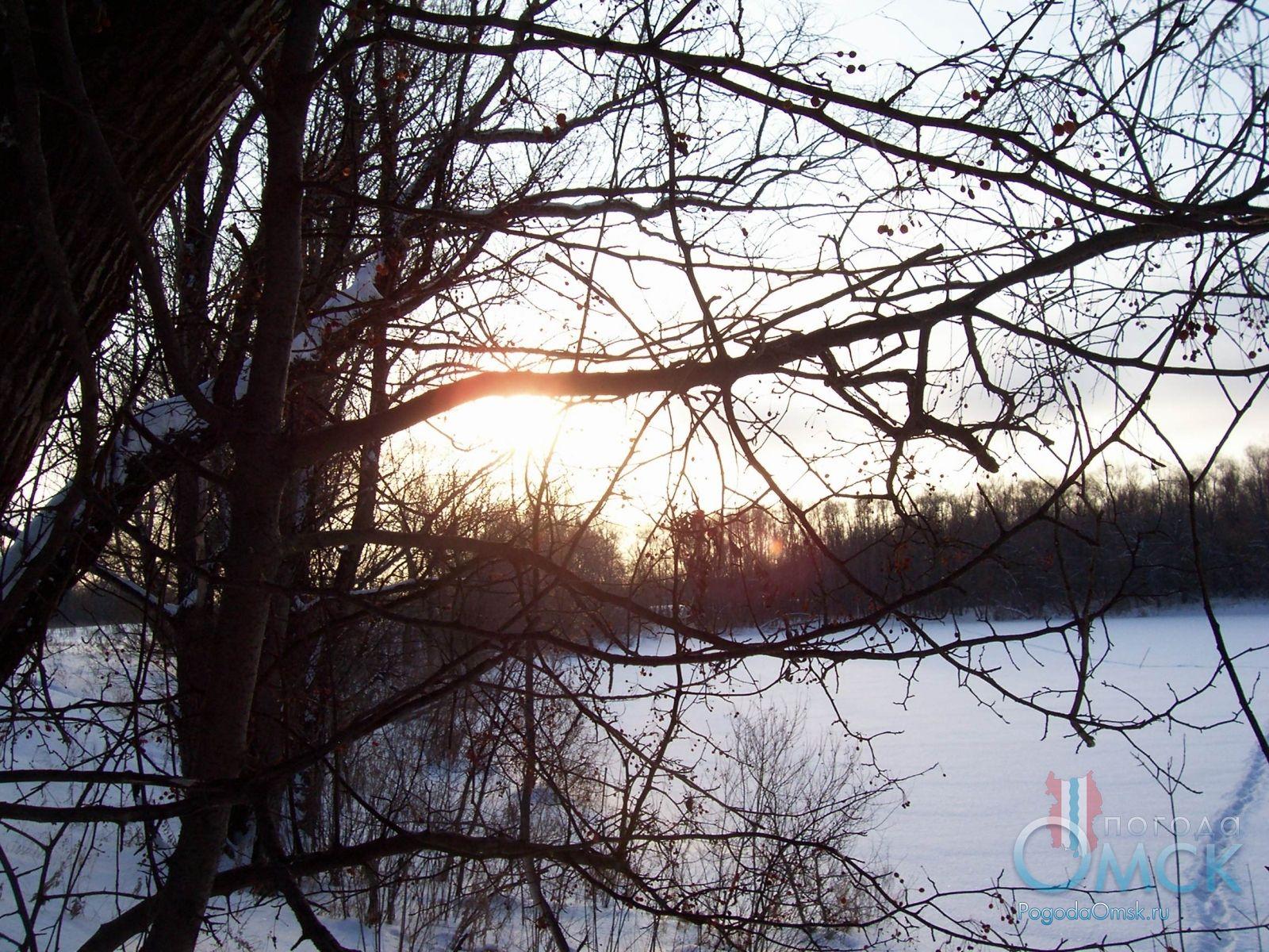 Закат в декабрьском лесу