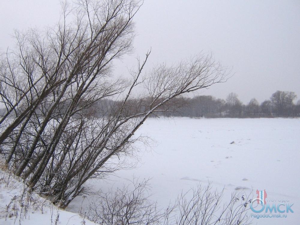 Берег Иртыша