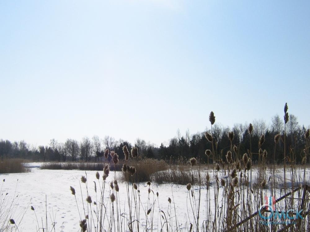 Воздух прогретый мартовскими лучами солнца