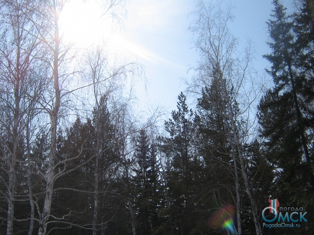 Солнце согревает своими лучами остывший за долгую зиму воздух