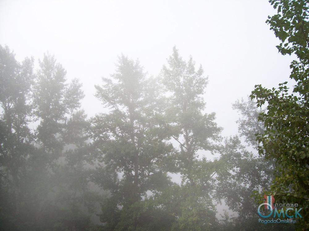 Туман в Омске