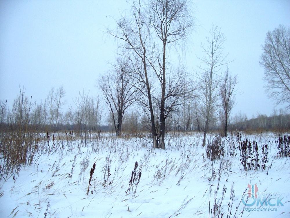 Сугробы пушистого снега