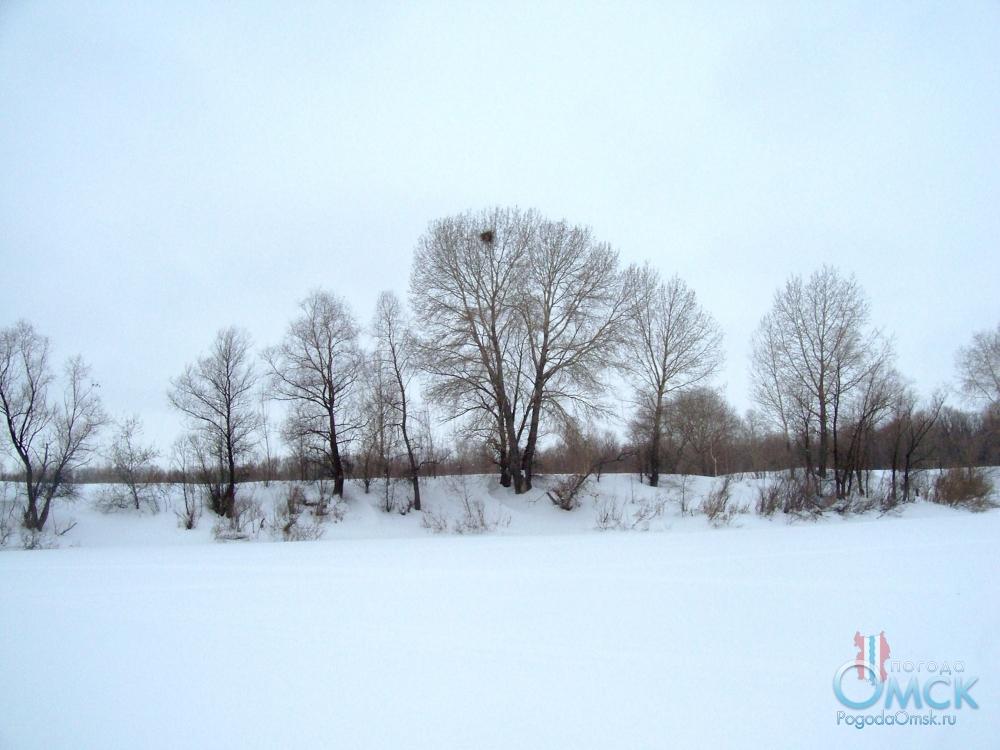Нетронутая белизна выпавшего снега