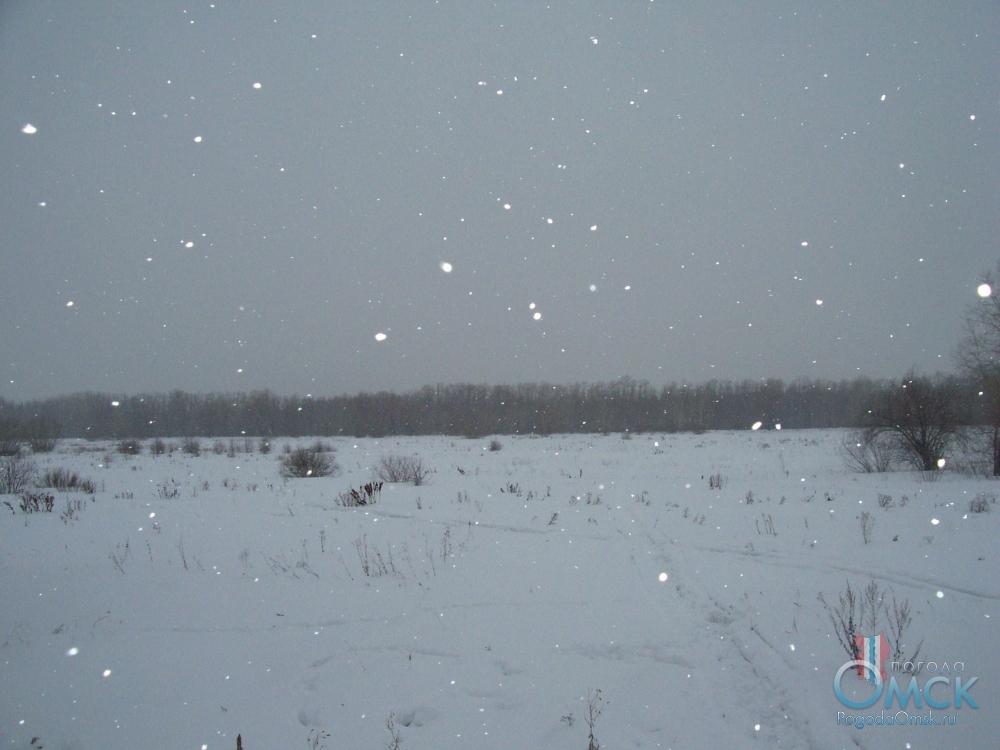 Снег падал густыми хлопьями