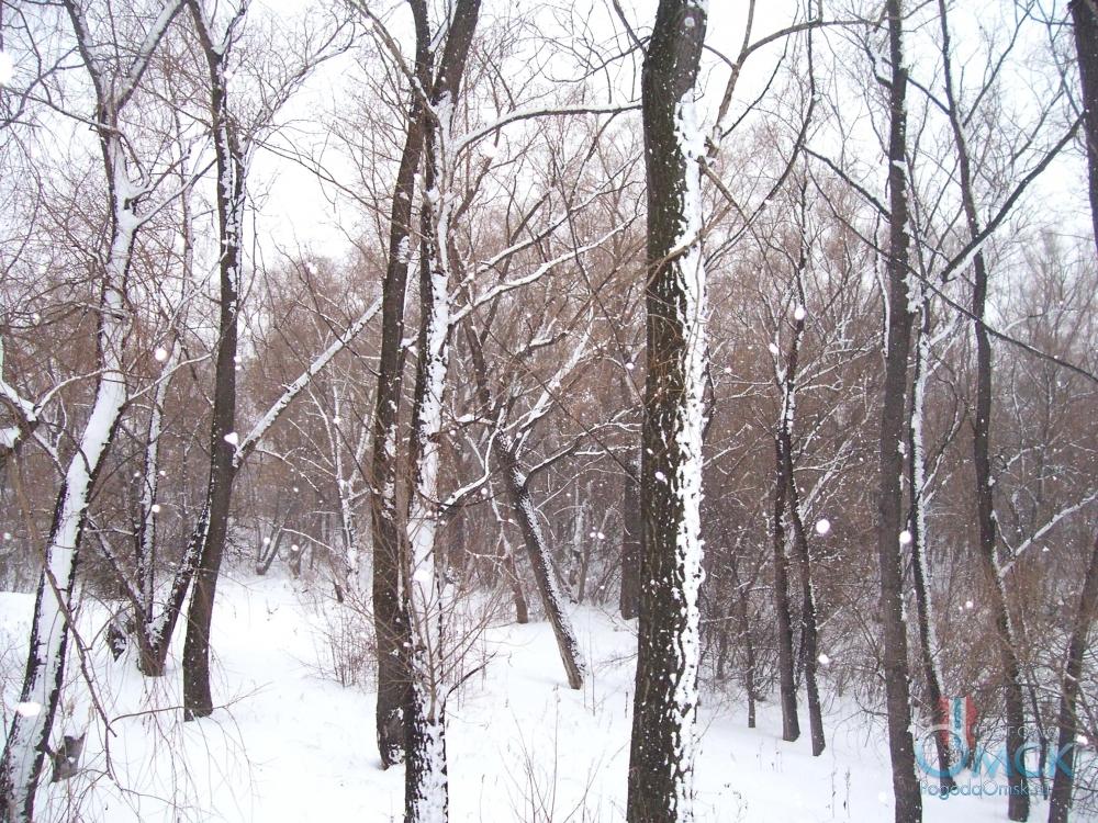 Снег стал падать реже, а ветер постепенно начал стихать
