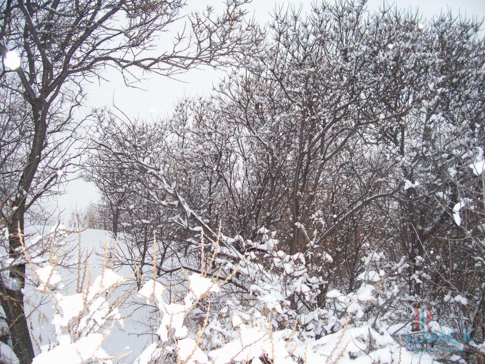 Снег укрыл всё вокруг