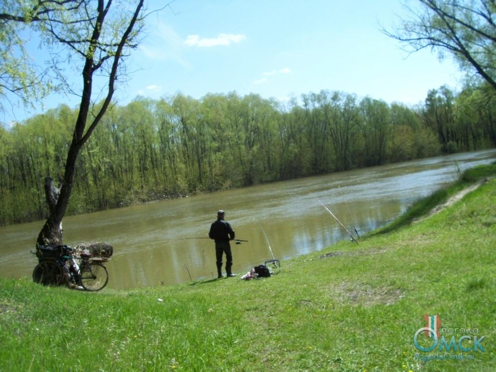 Солнечный майский день на берегу реки
