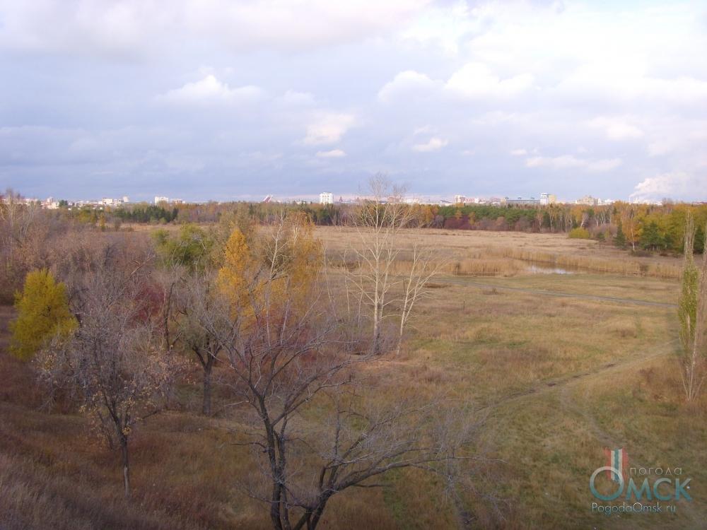 Вид на парк им. 30-летия Победы со смотровой площадки