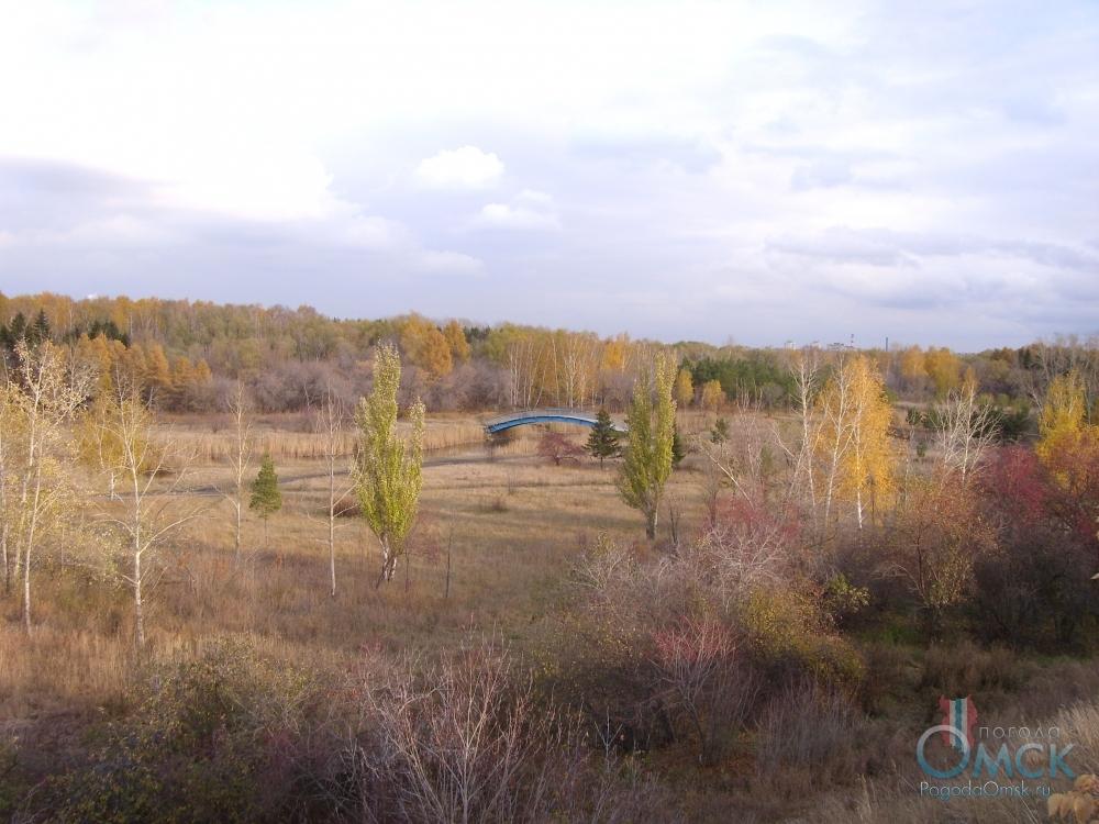 Осень - самое насыщенное красками время года