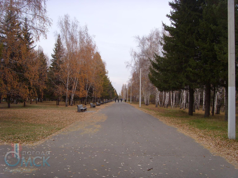 Аллея в парке Победы