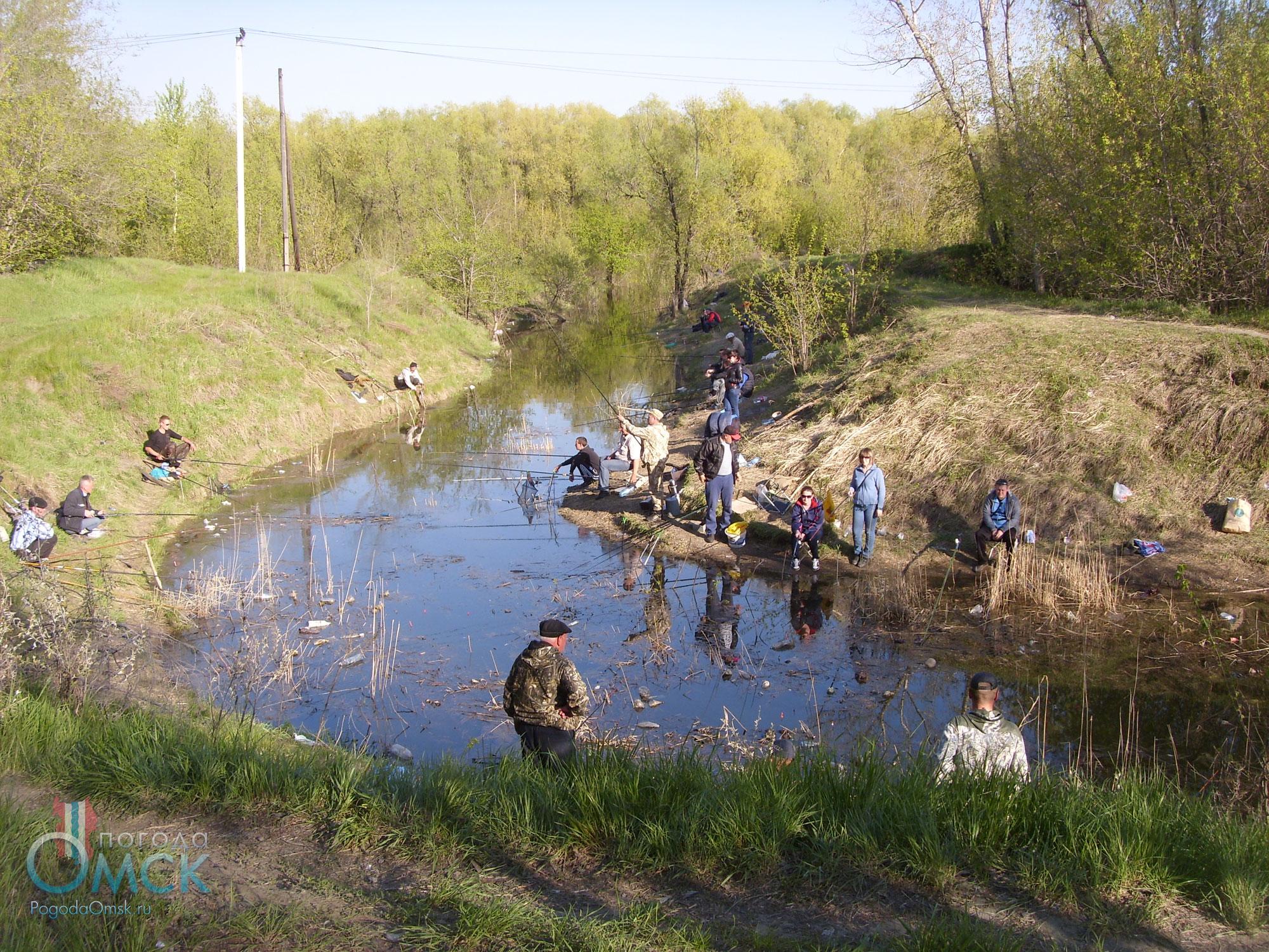 Рыбаки в парке Победы