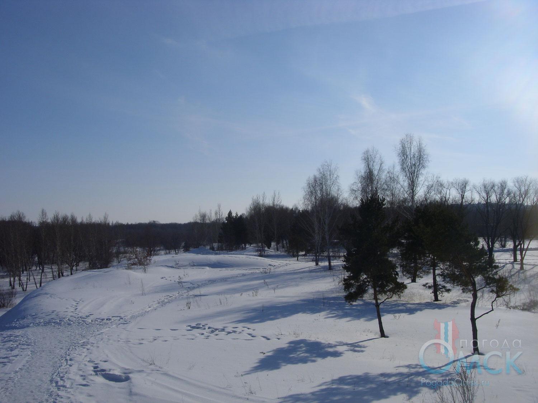 Солнечный зимний день в парке