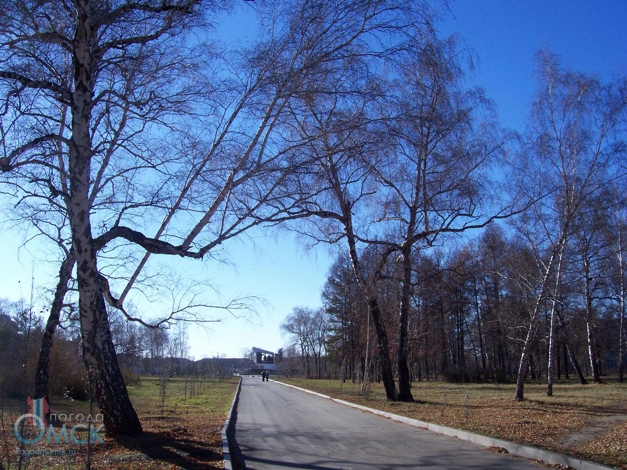 Октябрьский день в парке