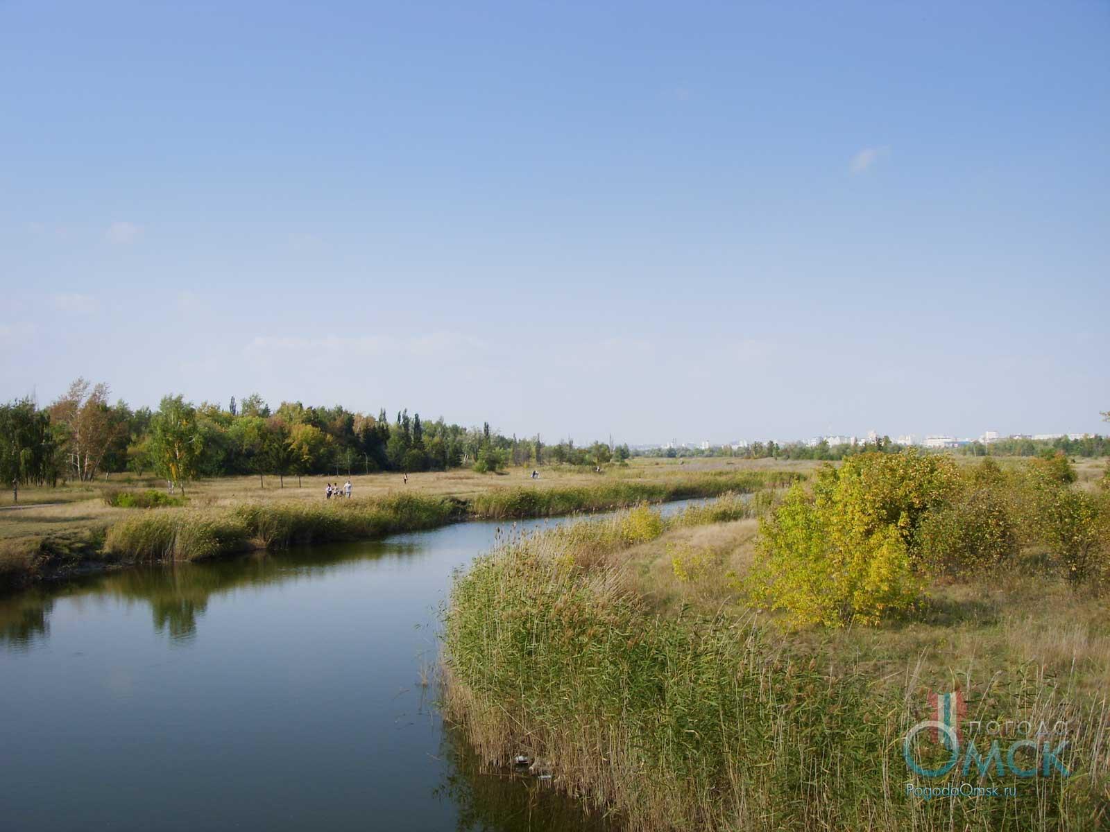 Вид на пруд в парке