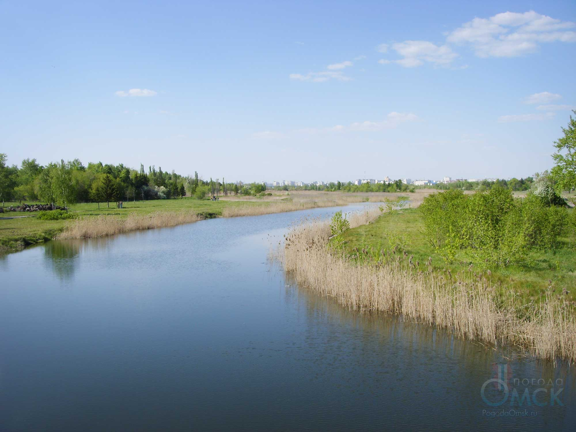 Длинный пруд в парке