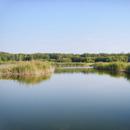 Пруд на месте бывшей речки Замарайка