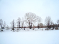 Февраль — самый снежный месяц